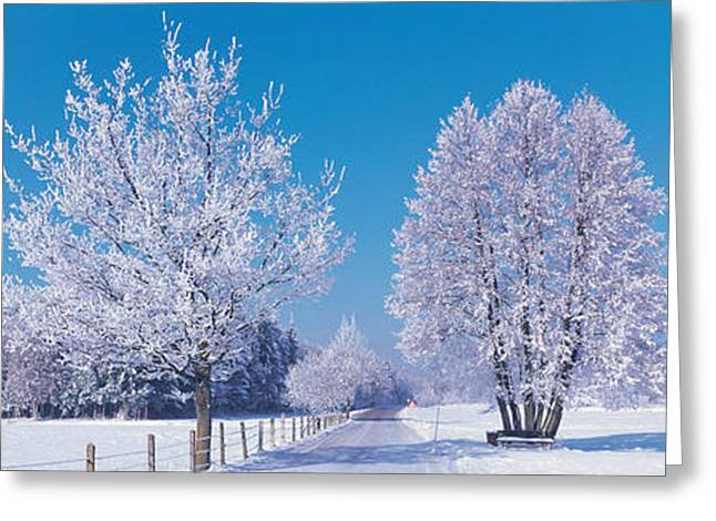 Rural Landscapes Greeting Cards - Winter Scenic Germany Greeting Card by Panoramic Images
