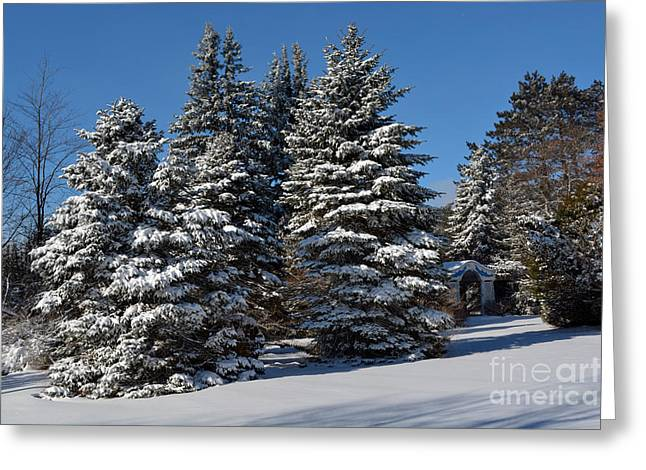 Blizzard Scenes Greeting Cards - Winter Scenic Landscape Greeting Card by Gary Keesler