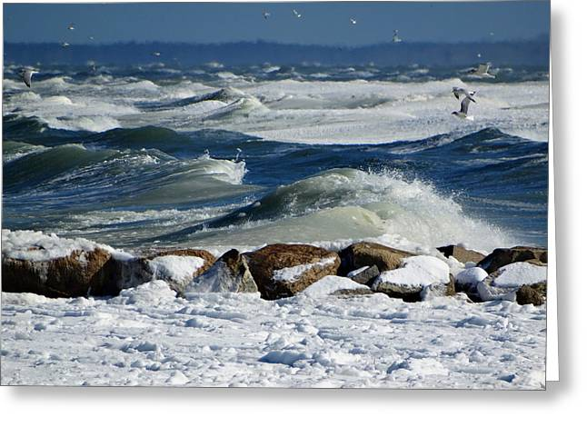 Cold Storage Beach Greeting Cards - Winter Seascape Greeting Card by Dianne Cowen