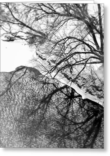 Snowy Day Greeting Cards - Winter Shadows Greeting Card by Valentino Visentini