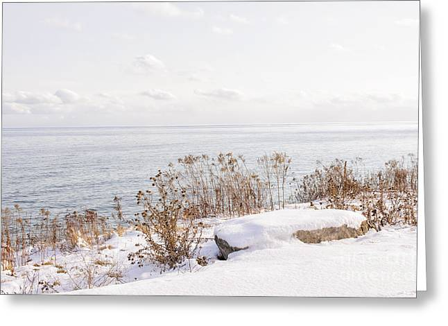 Winter Park Greeting Cards - Winter shore of lake Ontario Greeting Card by Elena Elisseeva