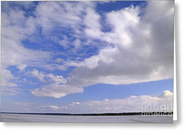 Barrie Greeting Cards - Winter Sky Greeting Card by Charline Xia