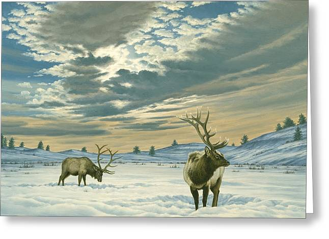 Elk Wildlife Greeting Cards - Winter Sky-Elk   Greeting Card by Paul Krapf