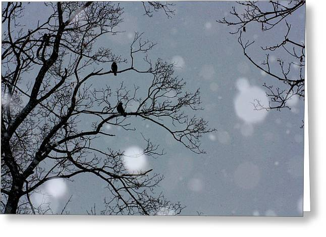 Winter Crows Greeting Cards - Winter Sky Greeting Card by Gothicolors Donna Snyder