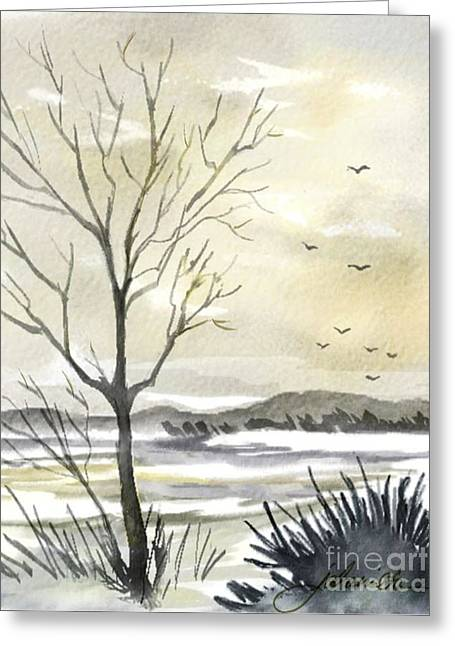 Winter Sky Greeting Card by Joan A Hamilton