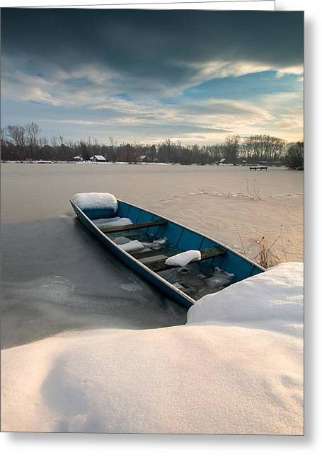 Black Clouds Greeting Cards - Winter sleep Greeting Card by Davorin Mance