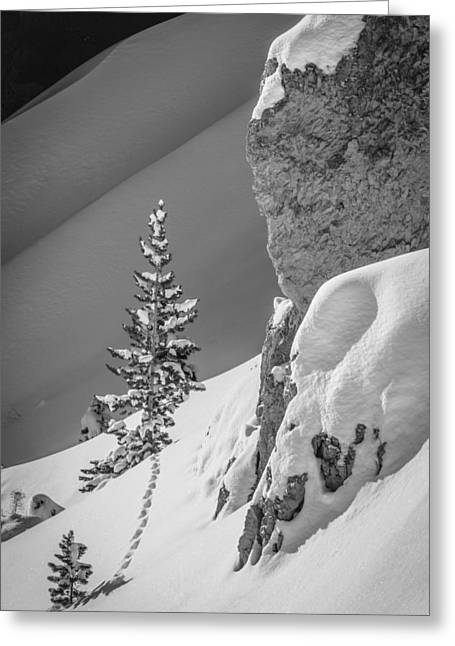 Rock Slope Greeting Cards - Winter Slopescape Greeting Card by Jennifer Grover
