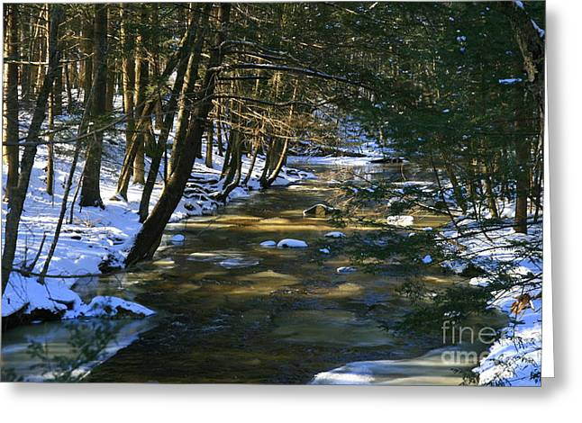 Union Connecticut Greeting Cards - Winter Snow  Greeting Card by Neal  Eslinger