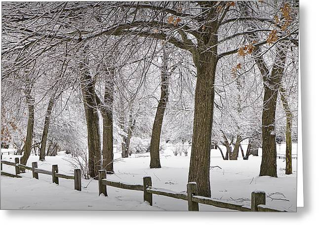 Snow Tree Prints Greeting Cards - Winter Snowfall at Garfield Park with Wooden Rail Fence No. 1038 Greeting Card by Randall Nyhof