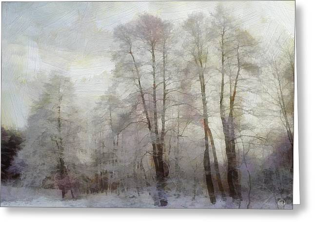 Sepia White Nature Landscapes Greeting Cards - Winter softness Greeting Card by Gun Legler