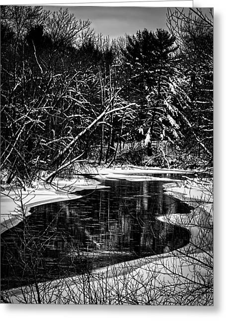 Thomas Young Photography Greeting Cards - Winter Solitude Greeting Card by Thomas Young