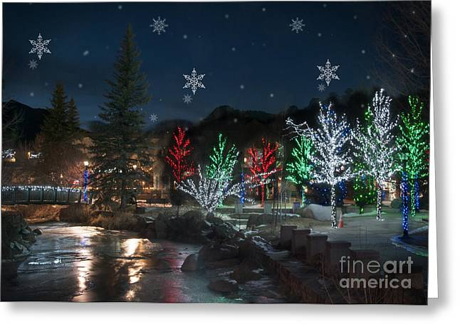 Christmas Lights Greeting Cards - Winter Solstice 2014 Greeting Card by Juli Scalzi
