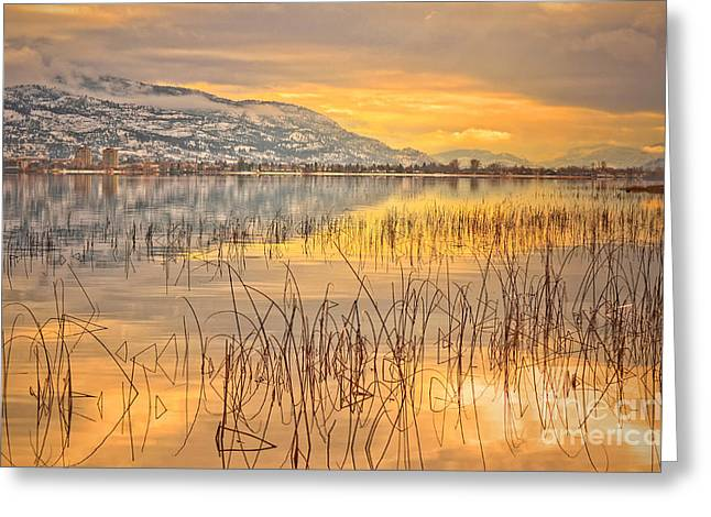 Okanagan Valley Greeting Cards - Winter Solstice 5 Greeting Card by Tara Turner