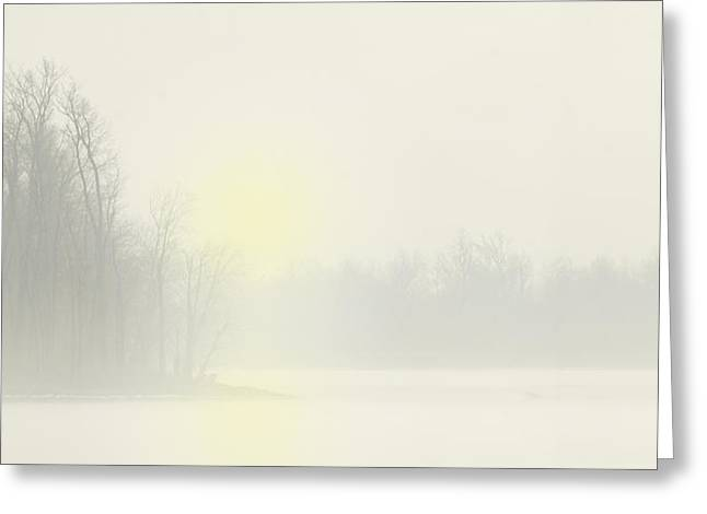 Eagles Pastels Greeting Cards - Winter Solstice Mississippi River Greeting Card by Garry McMichael