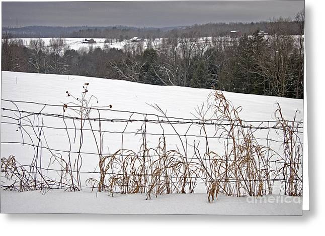 Ominous Sky Greeting Cards - Winter Squall Panorama Greeting Card by John Stephens