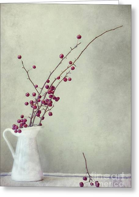 Red Berries Greeting Cards - Winter Still Life Greeting Card by Priska Wettstein