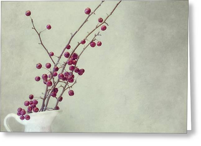 winter still life Greeting Card by Priska Wettstein