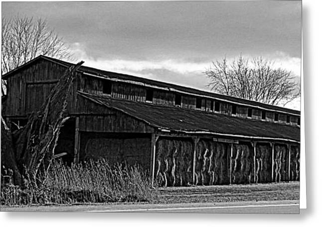 Outbuildings Greeting Cards - Winter Storage for Hay Greeting Card by Laura Louise