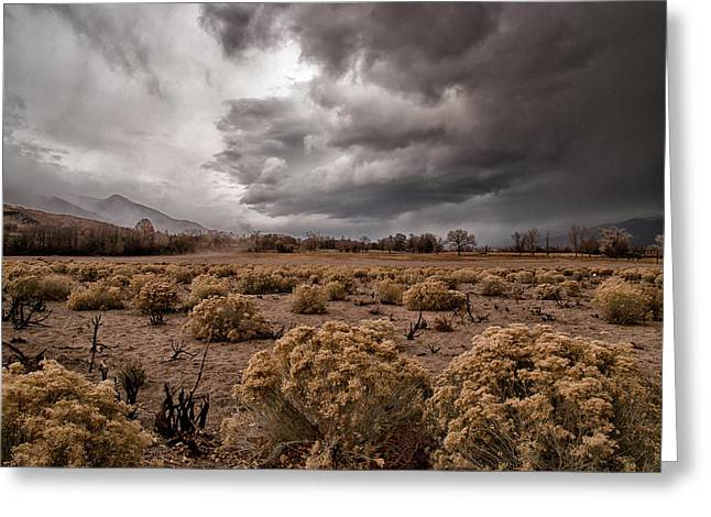Storm Clouds Greeting Cards - Winter Storm Greeting Card by Cat Connor