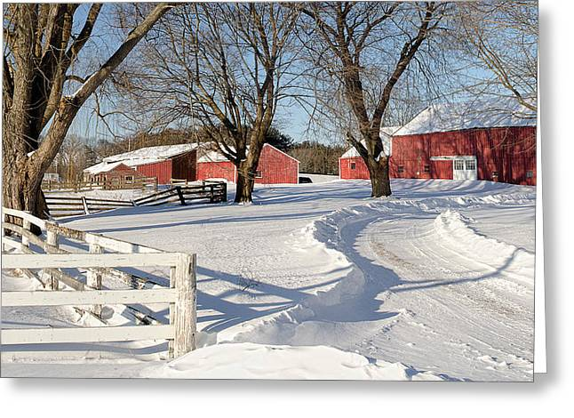 Juno Greeting Cards - Winter Storm Juno Greeting Card by Rick Mosher
