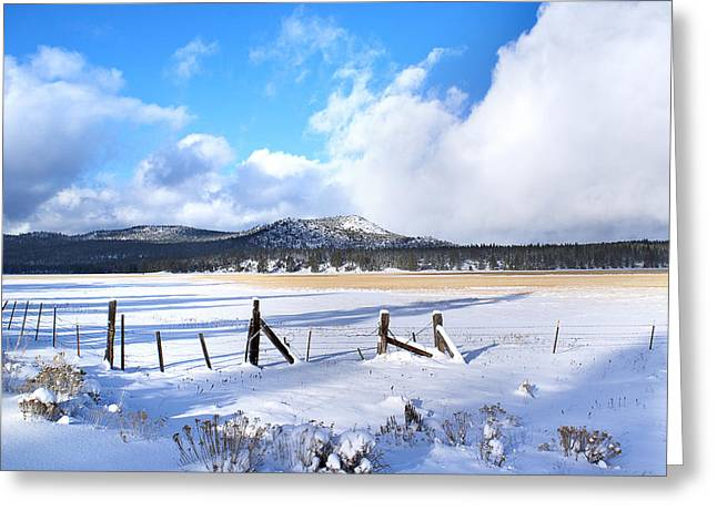 Grazing Snow Greeting Cards - Winter Storm Moves On Greeting Card by Abram House