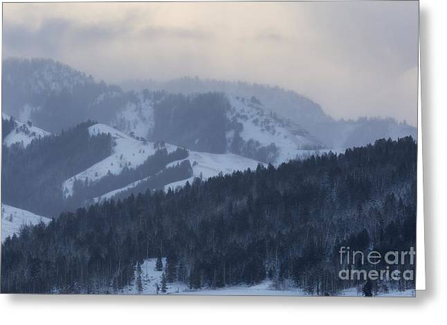 Bridger Teton Greeting Cards - Winter Storm Over Gros Ventre Mountains Greeting Card by Mike Cavaroc