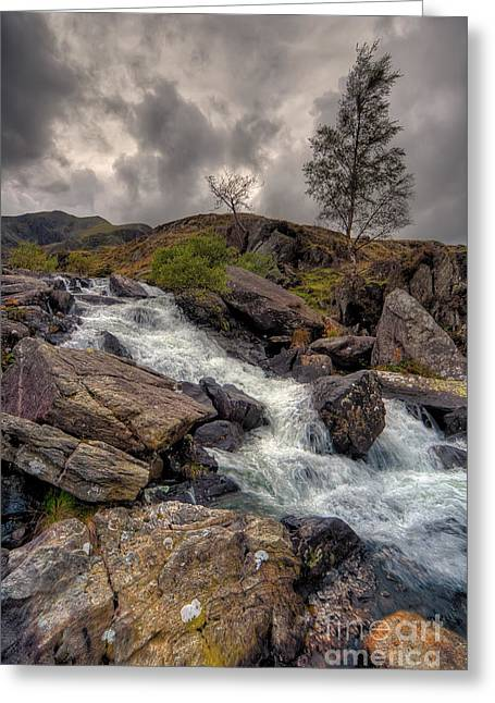 Stream Digital Greeting Cards - Winter Stream Greeting Card by Adrian Evans