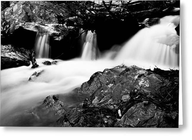 Fishing Creek Greeting Cards - Winter Stream In Monochrome Greeting Card by Parker Cunningham