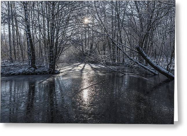 Snowy Stream Greeting Cards - Winter Sun Rays Greeting Card by Svetlana Sewell