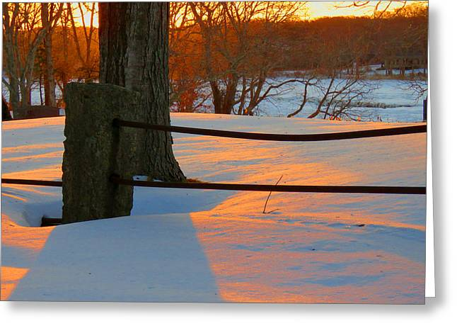 East Dennis Greeting Cards - Winter Sunrise Glow Greeting Card by Dianne Cowen