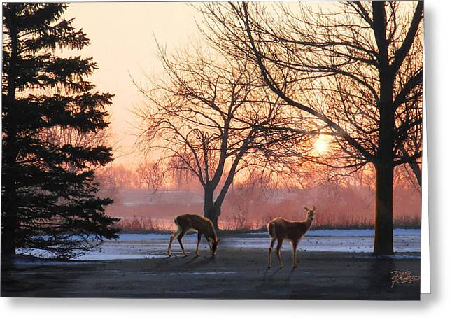 Bare Trees Greeting Cards - Winter Sunrise Greeting Greeting Card by Doug Kreuger