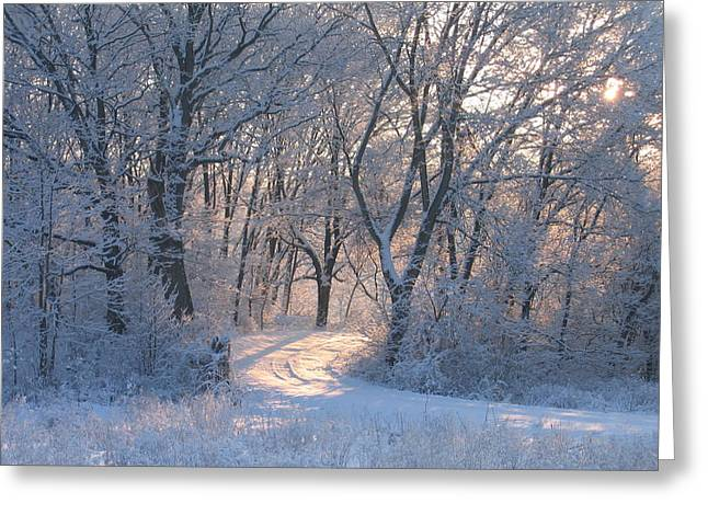 Indiana Scenes Greeting Cards - Winter Sunrise Hoar Frost  Greeting Card by Jim Ferrier