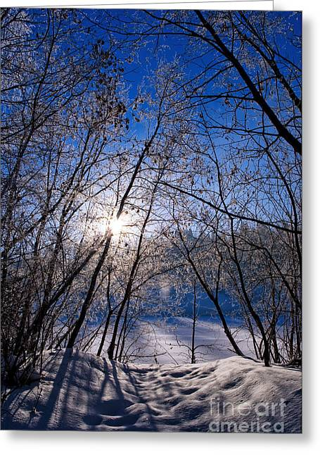 The North Greeting Cards - Winter Sunrise On The River Greeting Card by Terry Elniski