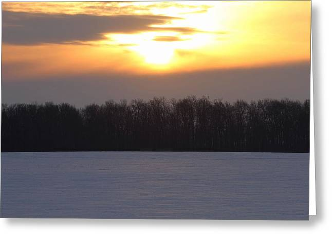 Winter Sunrise Over Forest Greeting Card by Dan Sproul