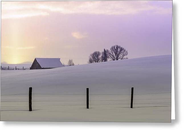 Shafts Of Light Greeting Cards - Winter Sunrise Greeting Card by Teri Virbickis