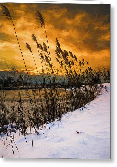 Snow-covered Landscape Greeting Cards - Winter sunrise through the reeds - Artistic Greeting Card by Chris Bordeleau