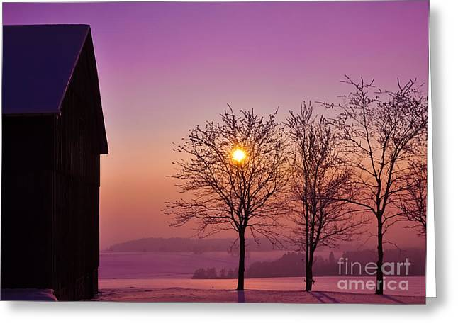 Backlit Greeting Cards - Winter Sunset Greeting Card by Aged Pixel