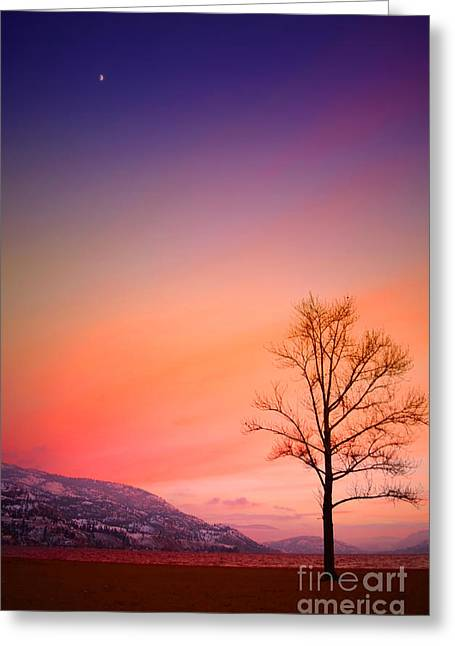 Snow Capped Greeting Cards - Winter Sunset at Hulley Beach Greeting Card by Tara Turner