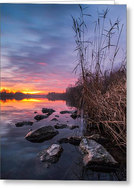 Riverscapes Greeting Cards - Winter sunset Greeting Card by Davorin Mance