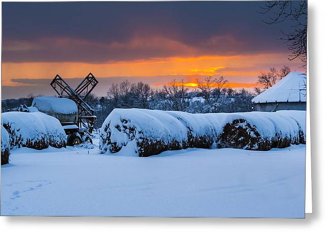 Orangem Tree Greeting Cards - Winter Sunset on the Farm Greeting Card by Jan M Holden