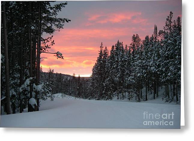 Winter Sunset Greeting Card by Jeanette French