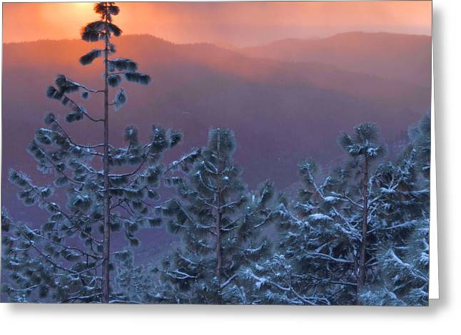 Kings Canyon Greeting Cards - Winter Sunset - Kings Canyon Greeting Card by Stephen  Vecchiotti