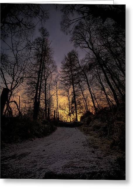 Birk Greeting Cards - Winter Sunset Path Greeting Card by Fraser Hetherington