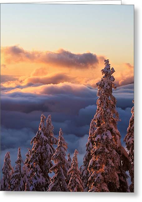 (c) 2010 Photographs Greeting Cards - Winter sunset Greeting Card by Pierre Leclerc Photography
