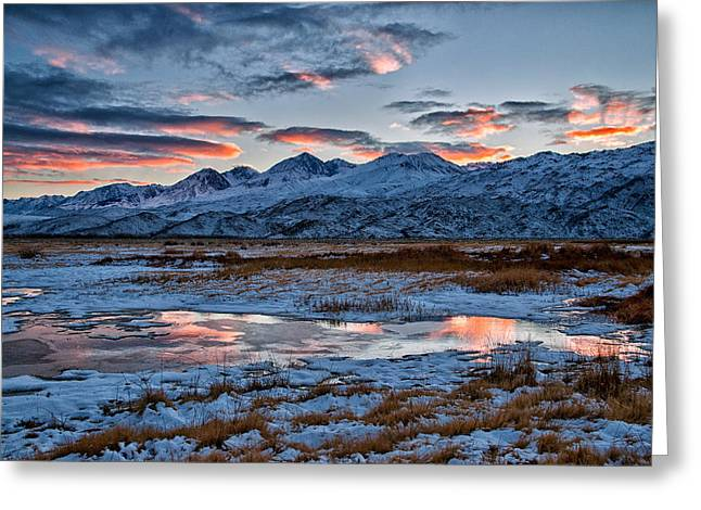 Puddle Greeting Cards - Winter Sunset Reflection Greeting Card by Cat Connor