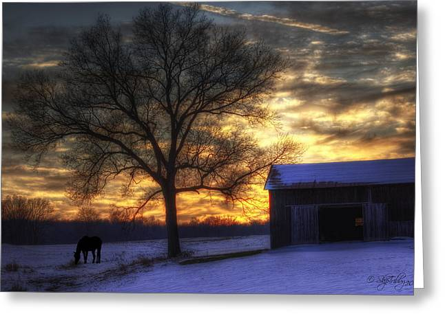 Skip Tribby Greeting Cards - Winter Sunset Greeting Card by Skip Tribby