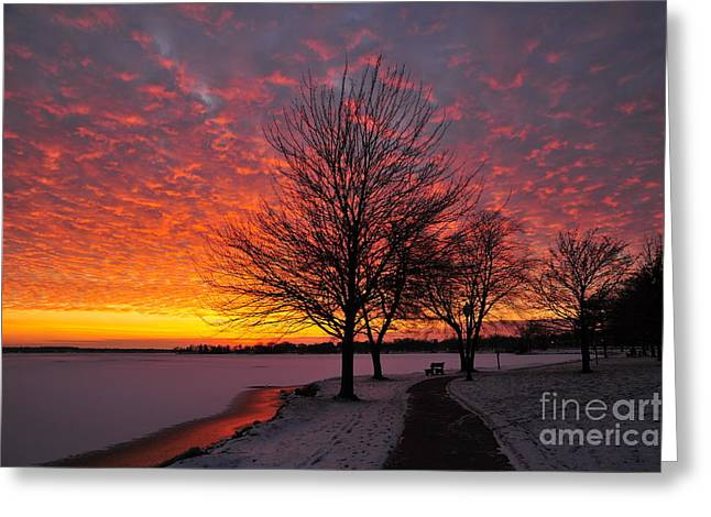 Skyscape Greeting Cards - Winter Sunset Greeting Card by Terri Gostola