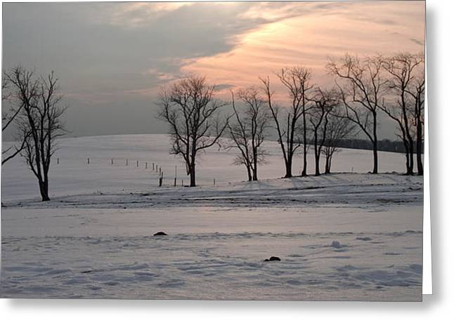 Winter Scenes Rural Scenes Greeting Cards - Winter Sunset Trees Snow Covered Pasture Greeting Card by John Stephens