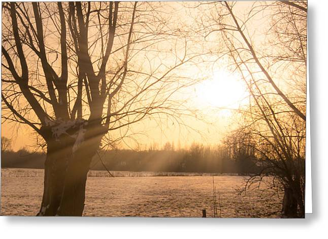 Winter Sunset Greeting Card by Wim Lanclus