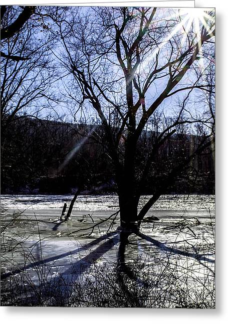 Delaware River Greeting Cards - Winter Sunshine Greeting Card by James Chesnick